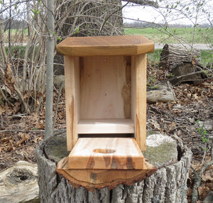 Bluebird Box,  Ambrosia Maple, Sassafras, and Oak Face Bluebird House