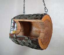 hanging bird feeder, seed feeder, log bird feeder