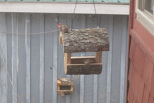 finches in fly through feeder made by Schoolhouse Woodcrafts