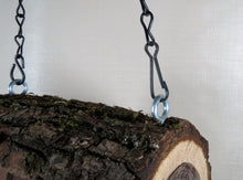 chain detail, log bird feeder
