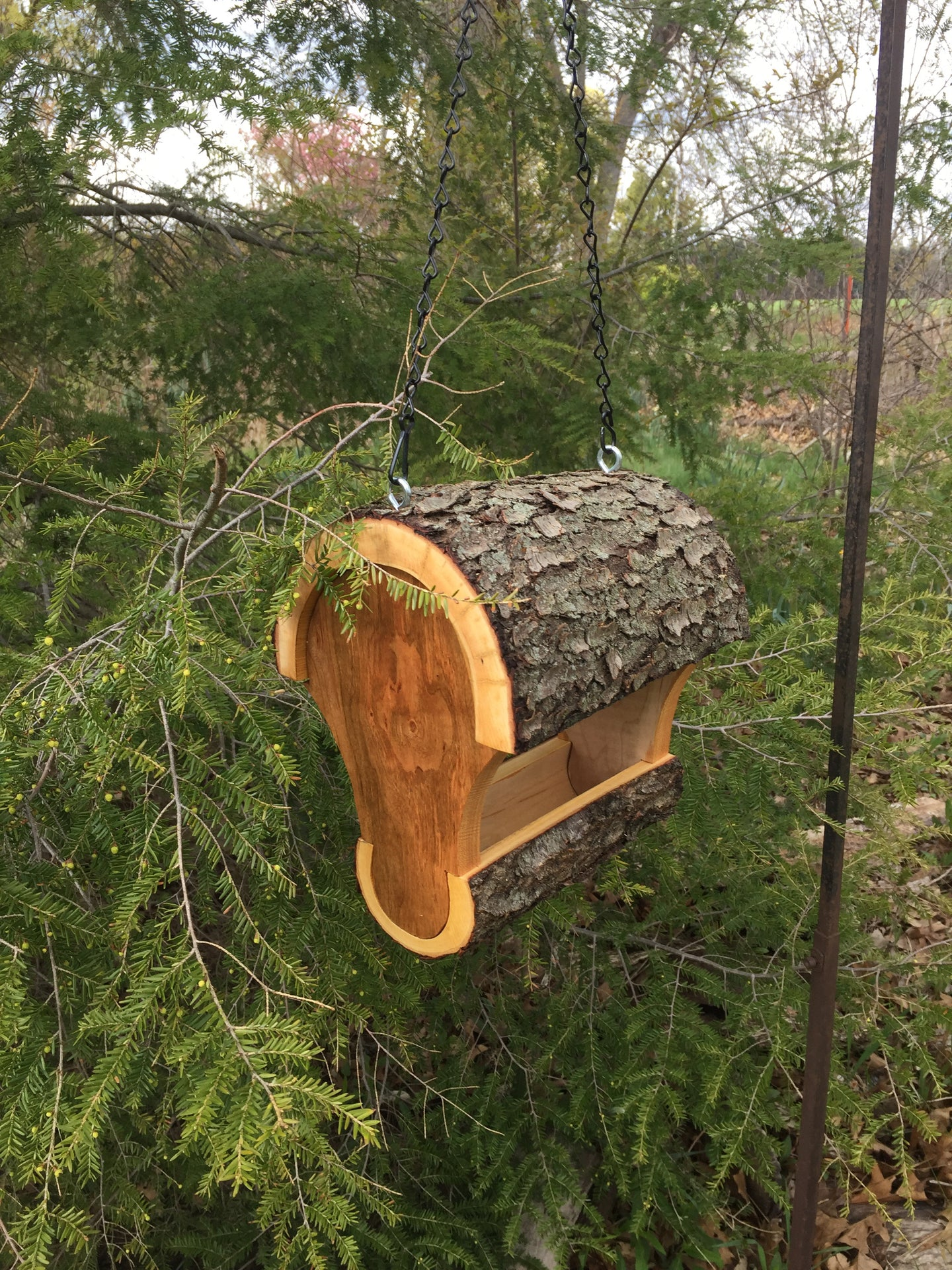 Bird Feeder, Smaller Hanging Fly Through Cherry Bird Feeder