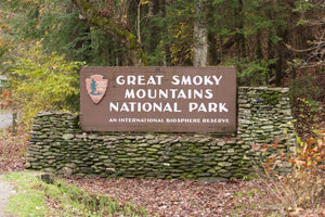 Celebrating the breathtaking Great Smoky Mountains National Park