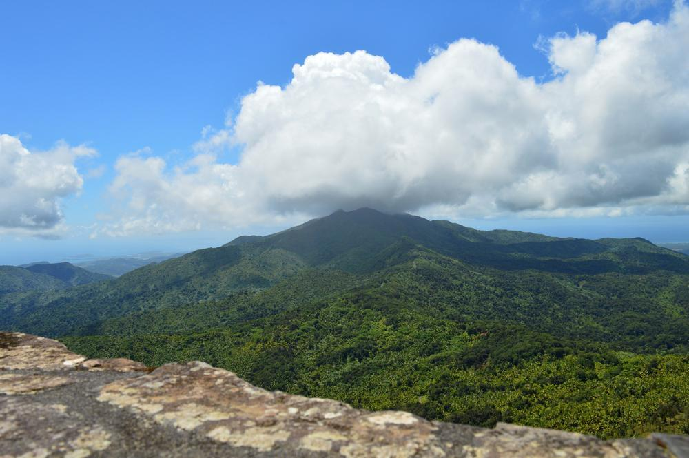 Common question - What can I do in El Yunque - Option#1