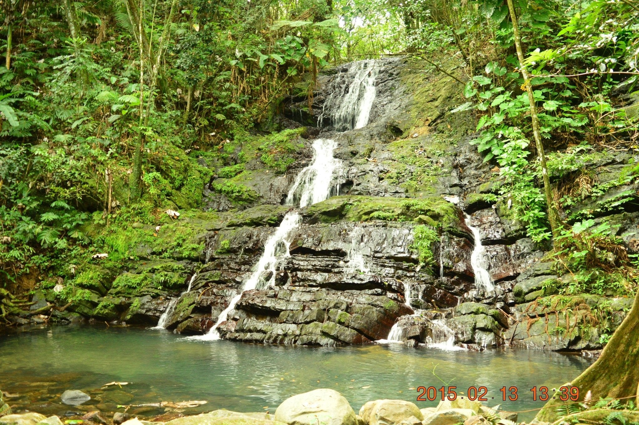 Common question - What can I do in El Yunque - Option#2