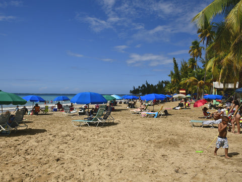 luquillo beach el yunque rain forest puerto rico forest nature vacation hiking caribbean eynf