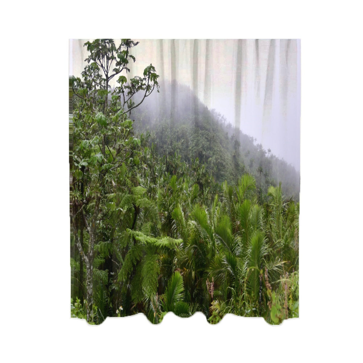 Chiffon - Two-piece Curtains - 40%-50% shading  - High Mountain Views  - Toro Negro rainforest Park Over 4,000 feet altitude - Highest in Puerto Rico