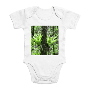 Affordable $15 - ORGANIC BABY BODYSUIT - Natural Images for an Intelligent Baby - Bromeliads the air plant - El Yunque rainforest Puerto Rico - Yunque Store
