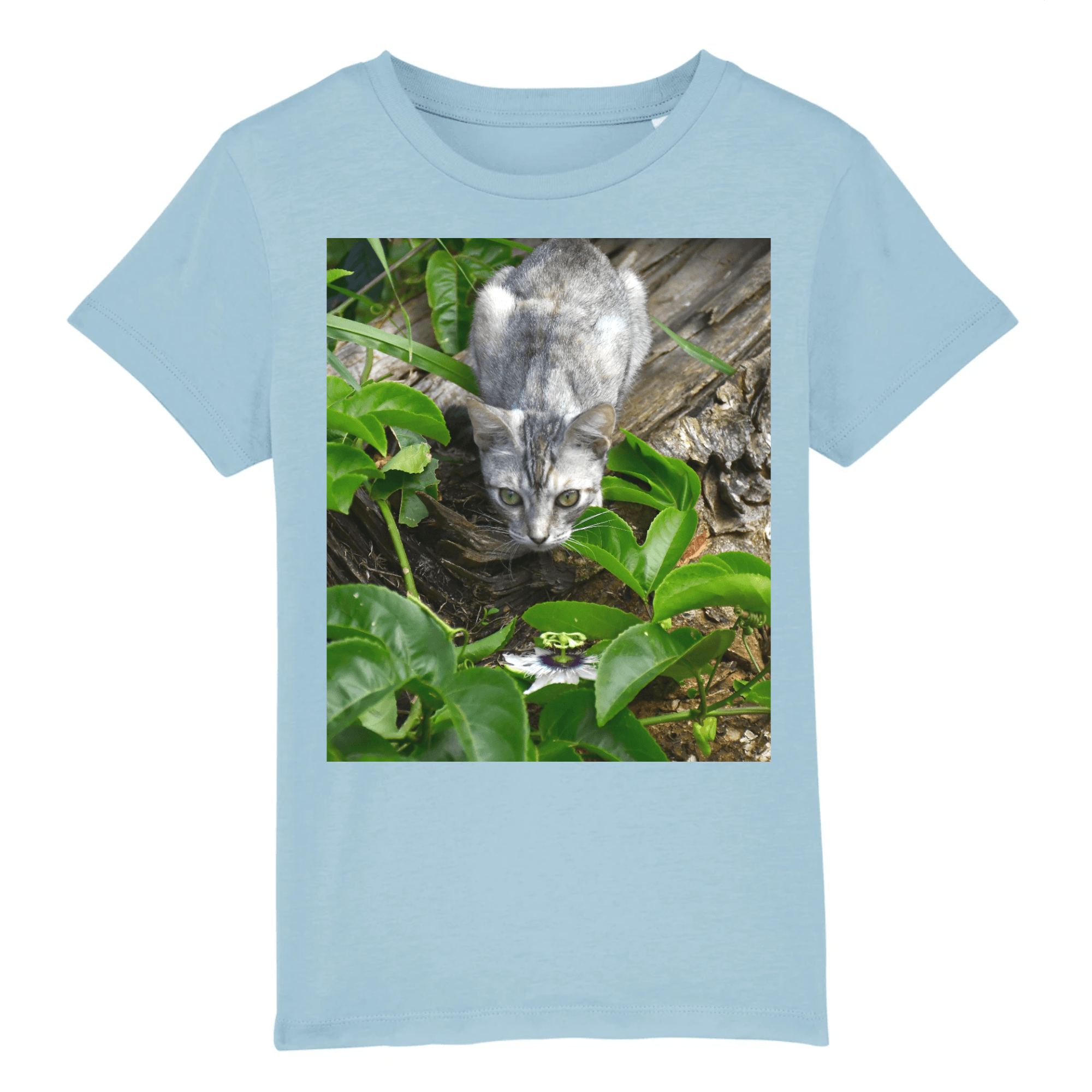 Affordable $19 - CHILD T-SHIRT - 100 % ORGANIC COTTON - Natural Images - Our home cat Mimi watchful in front of Passionflower- PR - Yunque Store