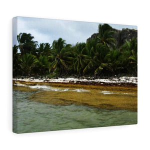 Amazing Mona Island - Puerto Rico - the Galapagos of the Caribbean - Pajaros beach Canvas Printify