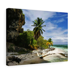 Awe-inspiring Mona Island off Puerto Rico - the Galapagos of the Caribbean - Thrilling Pajaros beach - Yunque Store