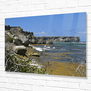 📣 Awesome Mona Island WALL PLATE - Pajaros beach - remote - Puerto Rico - beach image converted to painting - Yunque Store