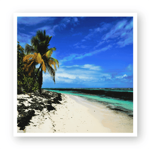 Awesome Pajaros Beach - Mona Island Puerto Rico - Yunque Store
