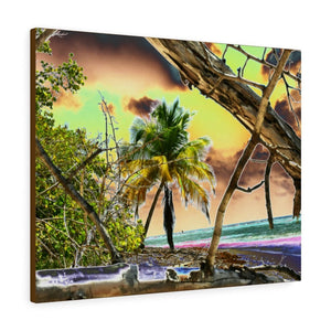 BEACH@HOME - Home/office decor ideas: Canvas Gallery Wraps - Remote & Pristine Mona Island near Puerto Rico - color curves manually modified for special effects - US PRINT - Yunque Store