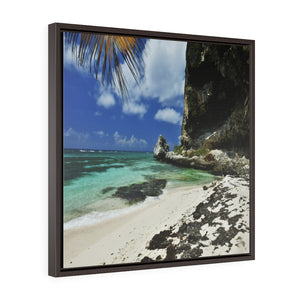 BEACH@HOME - US MADE - Square Framed Premium Gallery Wrap Canvas - Remote & Pristine Mona Island pajaros BEACH corner & cave - near Puerto Rico - Yunque Store