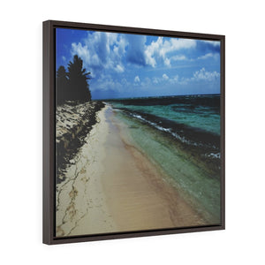 BEACH@HOME - US MADE - Square Framed Premium Gallery Wrap Canvas - Remote & Pristine Mona Island pajaros BEACH near Puerto Rico - Yunque Store