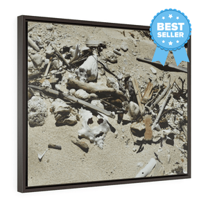 BEACH WONDERS: Horizontal Framed Premium Gallery Wrap Canvas -- ON THE BEACH! - US MADE - Square Framed Premium Galery Wrap Canvas -- Remote & Pristine Mona Island near Puerto Rico - beach stuff moved by the tides - great beach reminders... - Yunque Store