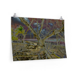 BEACH WONDERS POP ART - Premium Matte horizontal posters -- Remote & Pristine Mona Island near Puerto Rico - Dry tree on the beach - color curves manually modified for special effects - US PRINT - Yunque Store