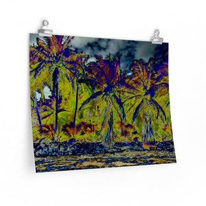 BEACH WONDERS POP ART - Premium Matte horizontal posters -- Remote & Pristine Mona Island near Puerto Rico - RARE COCONUT PALM FOREST on the beach - color curves manually modified for special effects - US PRINT - Yunque Store