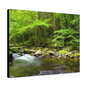 Canvas Gallery Wraps - A slow moving stream in Smoky Mountain National Park in Summer in Mountain National Park (SMNP) USA - Yunque Store
