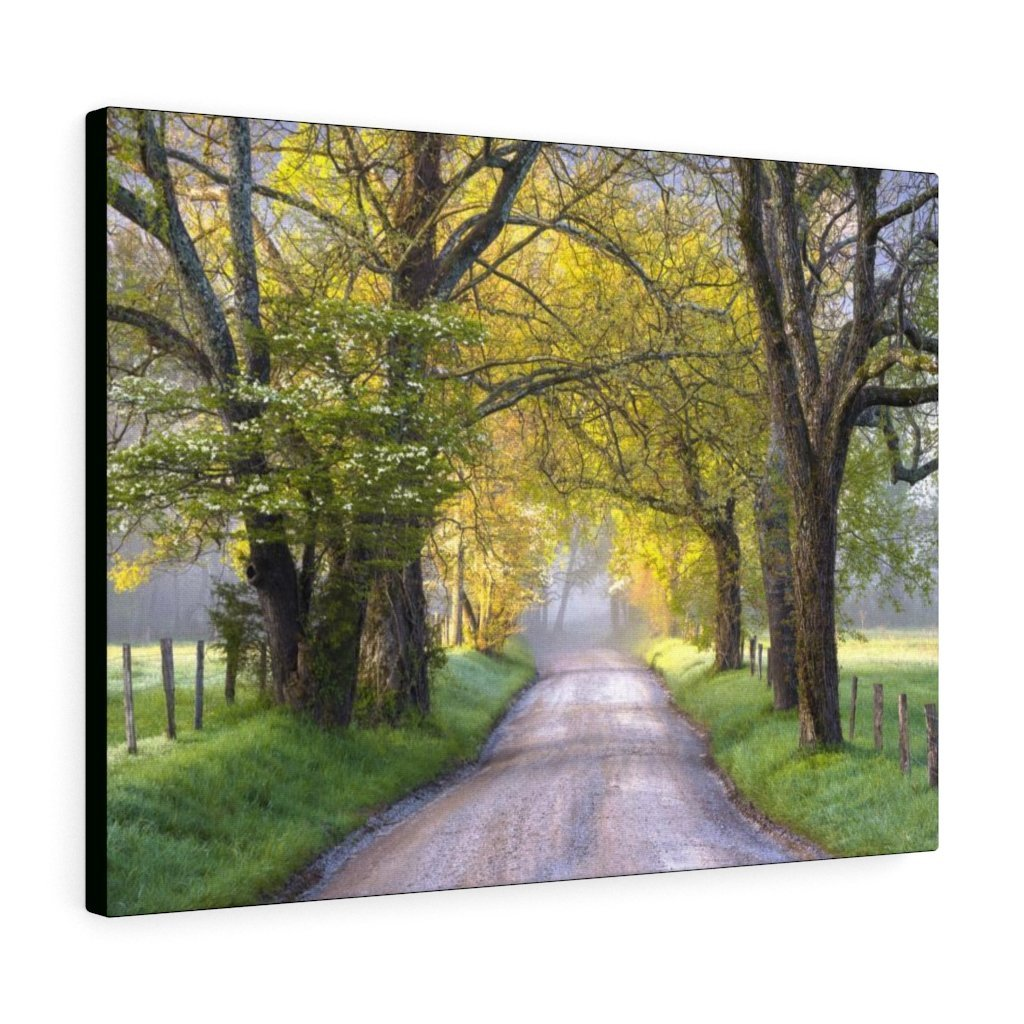 Canvas Gallery Wraps - Cades Cove in spring - the top of the world here - in Smoky Mountain National Park in Summer in Mountain National Park (SMNP) USA - Yunque Store