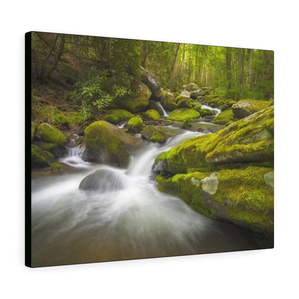 Canvas Gallery Wraps - Roaring Fork River waterfalls - the top of the world here - in Smoky Mountain National Park in Summer in Mountain National Park (SMNP) USA - Yunque Store