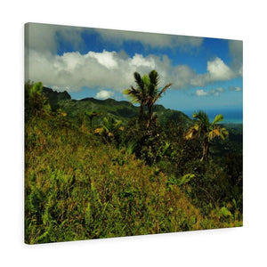 Canvas Gallery Wraps Series - Historic View of El Yunque rain forest Puerto Rico Before Hurricane Maria Canvas Printify