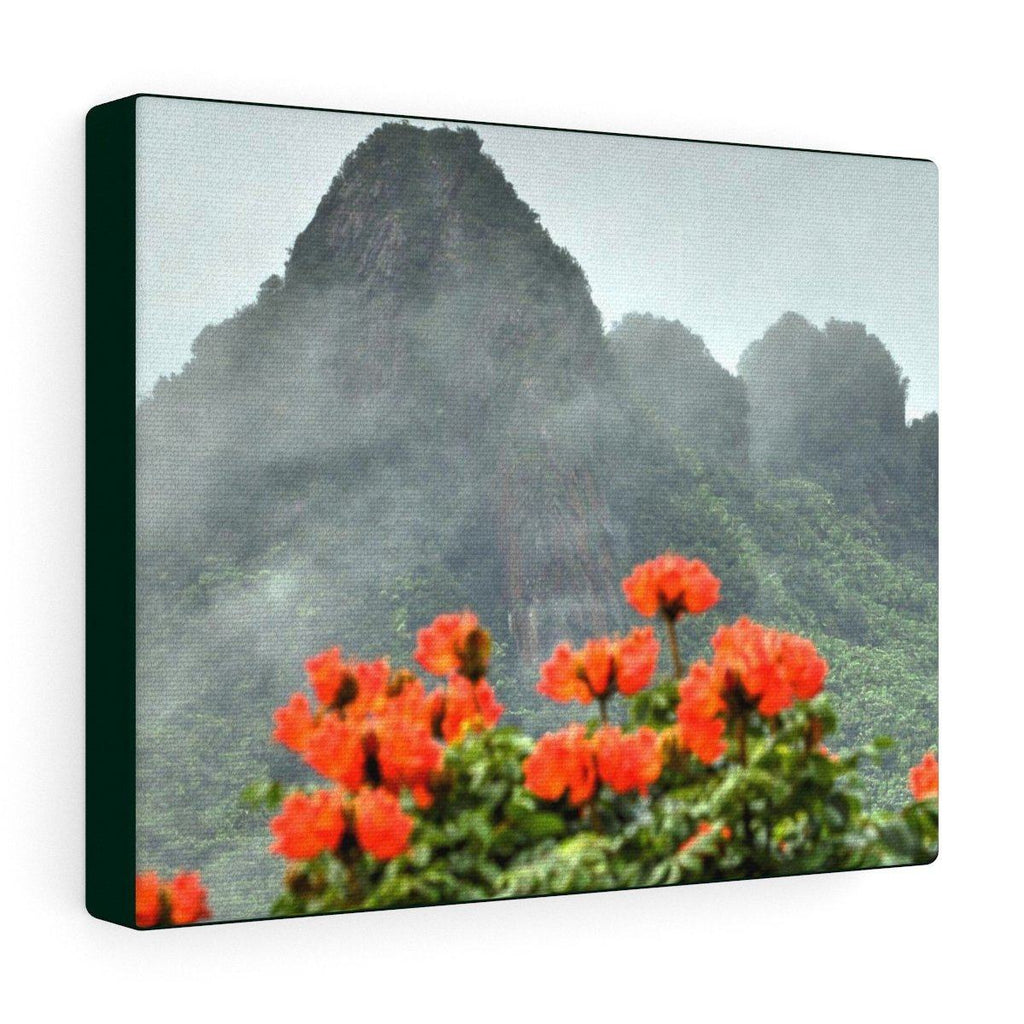 Canvas Gallery Wraps Series - Views of El Yunque rain forest Puerto Rico Canvas Printify