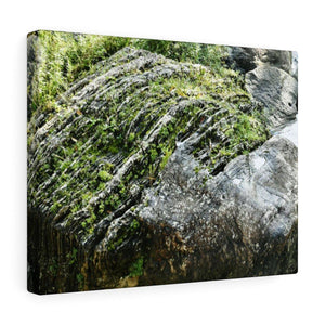 Canvas Gallery Wraps - US Made - CG Pro Prints in 2 days - Rio Sabana - El Yunque exploration on Sep 2019 - Amazing eroded boulder in the Cubuy river next to bridge on PR 191 Canvas Printify