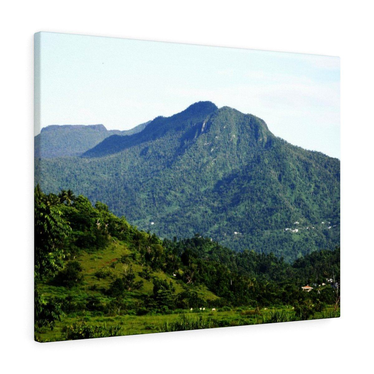 Canvas Gallery Wraps - US Made - CG Pro Prints in 2 days - Rio Sabana - El Yunque exploration on Sep 2019 - La Mina mountains were we are going - from PR 52 Canvas Printify