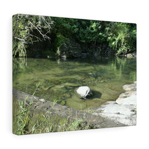 Canvas Gallery Wraps - US Made - CG Pro Prints in 2 days - Rio Sabana - El Yunque exploration on Sep 2019 - Rio Cubuy AAA dam pond - very clear since it's 8am. Canvas Printify