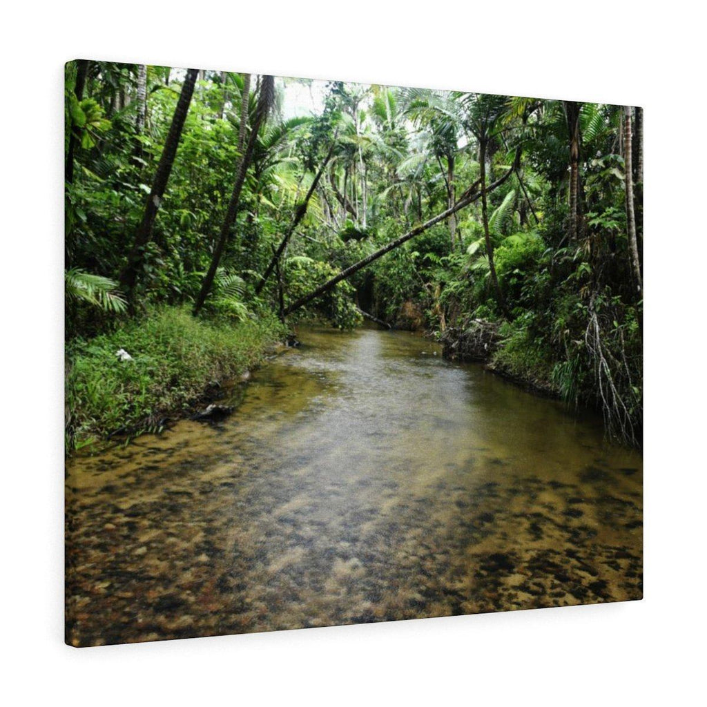 Canvas Gallery Wraps - US Made - CG Pro Prints in 2 days - Rio Sabana - El Yunque exploration on Sep 2019 - Rio Sabana after 1st trail crossing - a heavy rain is starting and this will be flooded soon Canvas Printify