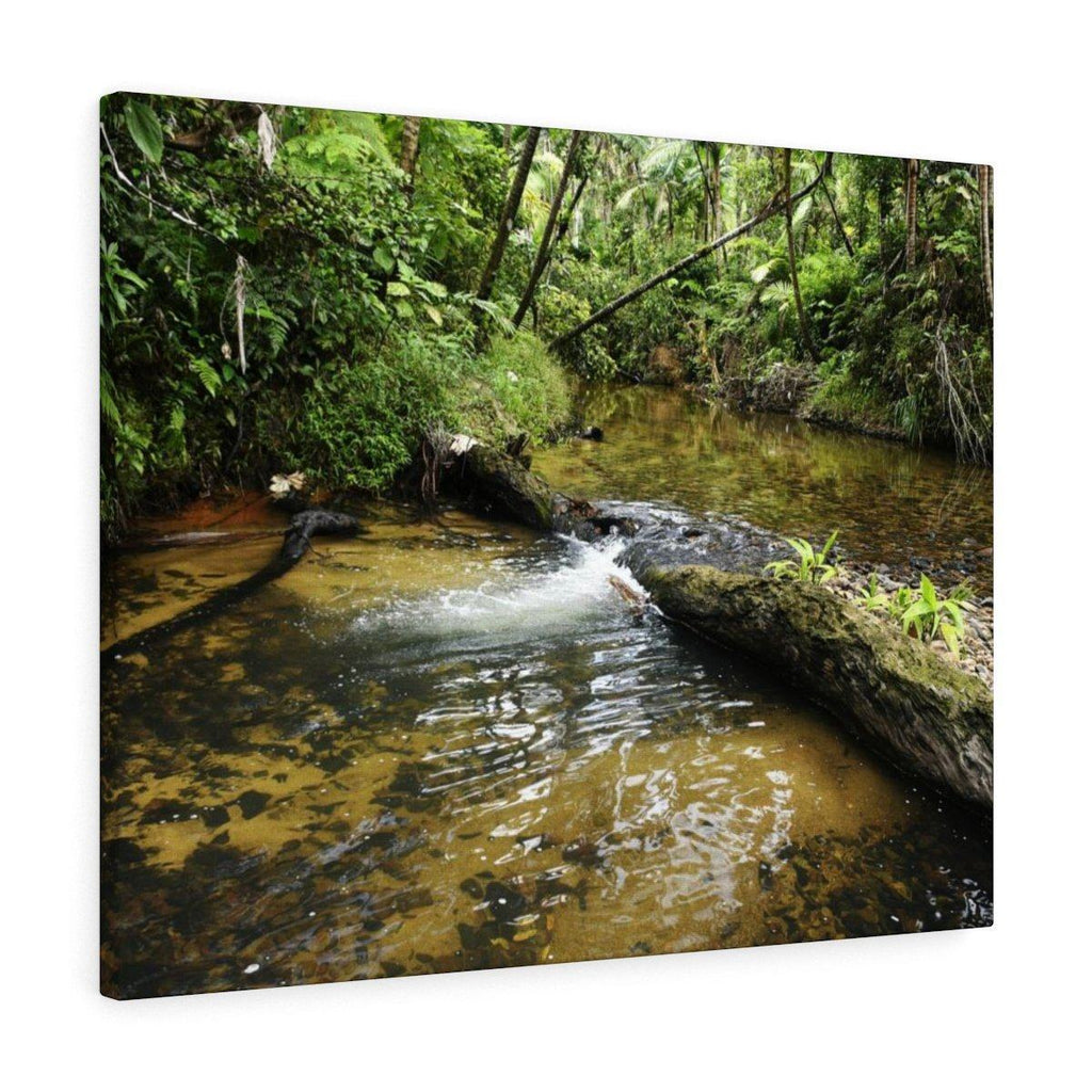 Canvas Gallery Wraps - US Made - CG Pro Prints in 2 days - Rio Sabana - El Yunque exploration on Sep 2019 - Rio Sabana after 1st trail crossing - beautiful shades in a change of water level Canvas Printify