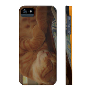Case Mate Slim Phone Cases - Family PET - The hard-working cat named Orange - guess why? Phone Case Printify