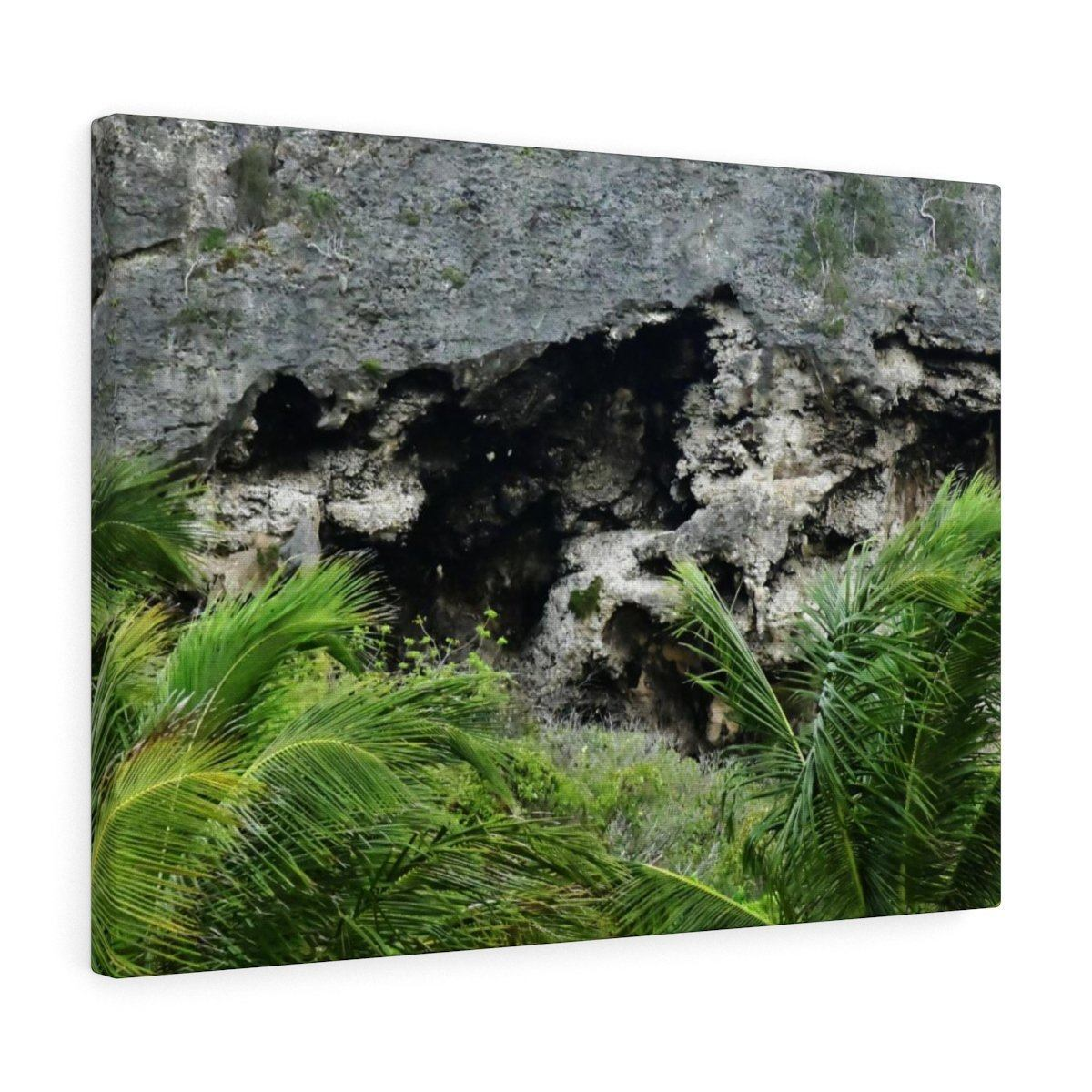 Closeup of Limestone plateau - Puerto Rico - the Galapagos of the Caribbean - in Pajaros beach Canvas Printify