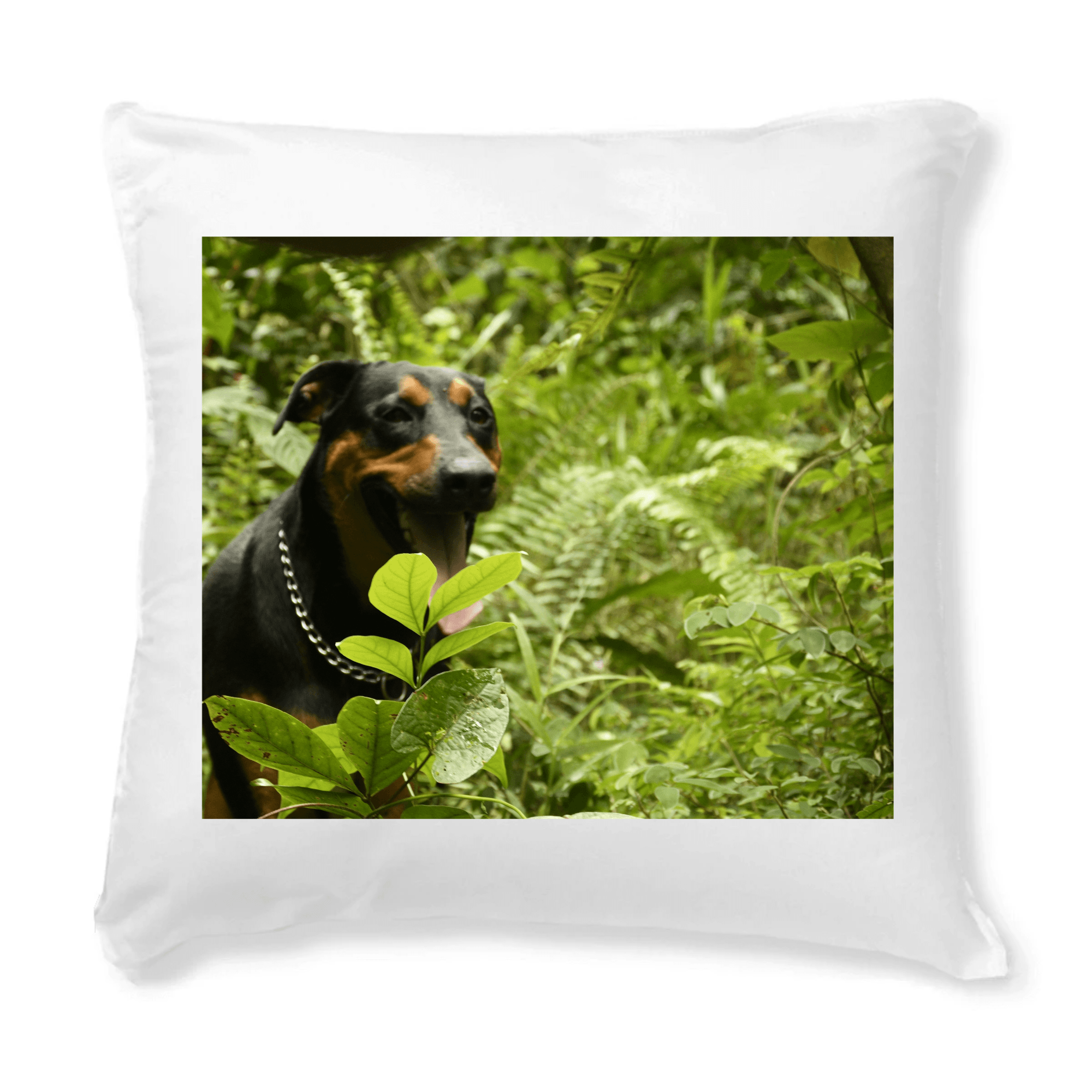 CUSHION + COVER - PILLOWS - The explorer dog Firo in El Yunque rainforest Puerto Rico - Yunque Store