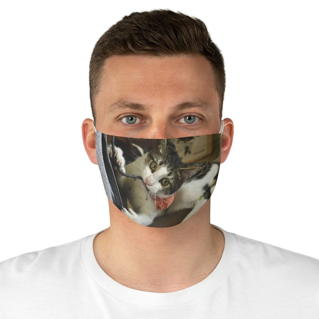 DEAL $6 - Yunque.Store RADIANT BEAUTY 🌈 Reusable Cloth Face Masks - Be Safe - Amazing Baby Cat Dante Isabela 🐱 Puerto Rico - Yunque Store