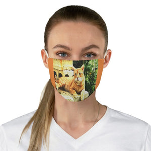 DEAL $6 - Yunque.Store RADIANT BEAUTY 🌈 Reusable Cloth Face Masks - Be Safe - Awesome Cat Orange Isabela 🐱 Puerto Rico - Yunque Store