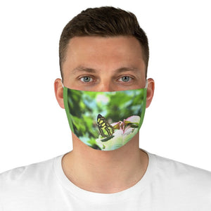 DEAL $6 - Yunque.Store RADIANT BEAUTY 🌈 Reusable Cloth Face Masks - Be Safe - Awesome tropical 🐱‍🐉 El Yunque Rainforest Butterfly - Puerto Rico 🐸 - Yunque Store