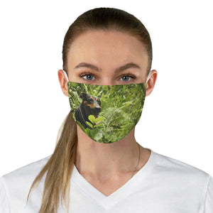 DEAL $6 - Yunque.Store RADIANT BEAUTY 🌈 Reusable Cloth Face Masks - Be Safe - Explorer 🐕 Dog Firo - El Yuqnue rainforest 🐸 Puerto Rico - Yunque Store