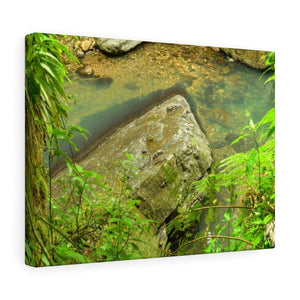EYNF - Canvas Gallery Wraps - The Magic pond in La Mina river and trail - El Yunque PR - before Hurricane Maria - Yunque Store