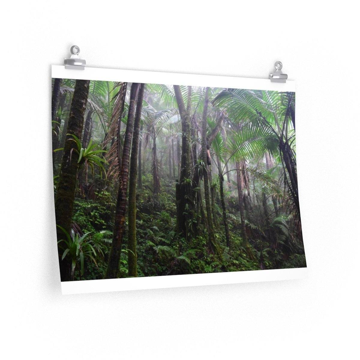 EYNF - Premium Matte horizontal posters - The cloud forest Poster Printify