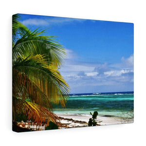 Fabulous Mona Island off Puerto Rico - the Galapagos of the Caribbean - Thrilling Pajaros beach Canvas Printify