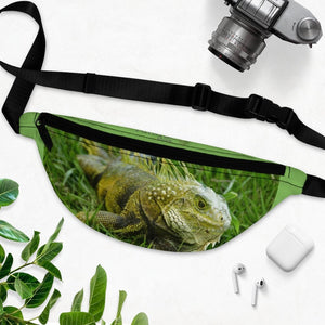 Fanny Pack with Organizer and Lightweight - Iguana in Puerto Rico - an invading species - Yunque Store