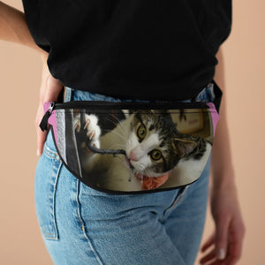 Fanny Pack with Organizer and Lightweight - The home cat Dante busy with cords - Isabela PR - Yunque Store