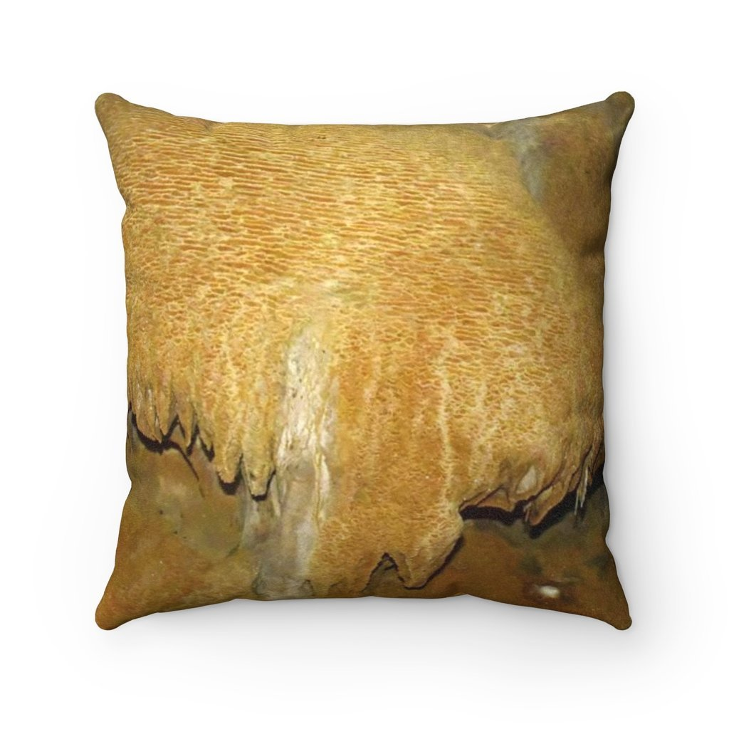 Faux Suede Square Pillow - Unique REMOTE Mona Island Caves Limestone 'Brain' - Galapagos of the Caribbean – Puerto Rico. - Yunque Store
