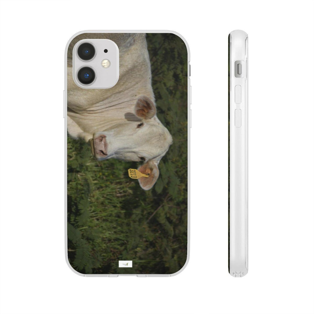 Flexi Cases - iPhone 11, Pro and Max: Yunque.Store real Nikon images from Naguabo - Puerto Rico - Nature@iPhone Phone Case Printify