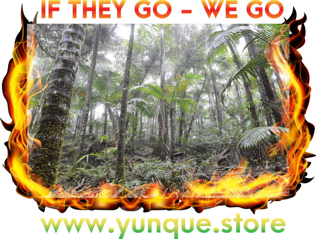 FREE DOWNLOAD DEMO - Video of the Gildan 5000 shirt with Global warming message T-Shirt Yunque Store