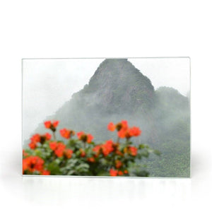 Glass Cutting Boards - Yokahu view AwsomeRainForest@Home