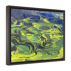 GREAT CHINA COLLECTION: Horizontal Framed Premium Gallery Wrap Canvas - Holy-Green Rapeseed Field Luoping, Yunnan province, China. - Yunque Store