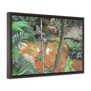 Horizontal Framed Premium Gallery Wrap Canvas - Holy Spirit River explorations - El Yunque rainforest PR - Yunque Store